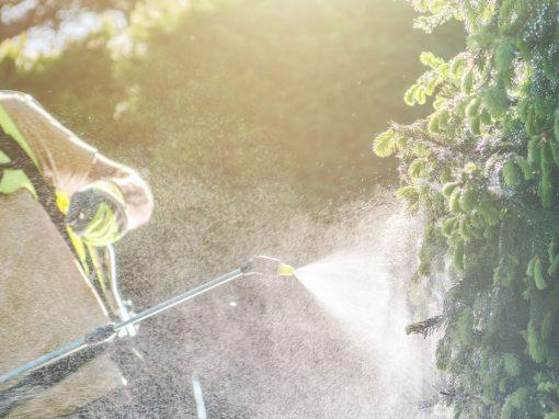 homem usa glifosato em plantação